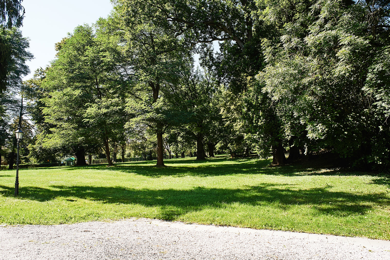 Park otaczający Pałac Radziwiłłow w Balicach